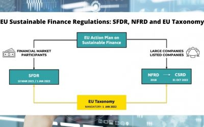 Demystifying EU Sustainable Finance Regulations: SFDR, NFRD and EU Taxonomy